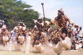 Traditional Zulu dancers