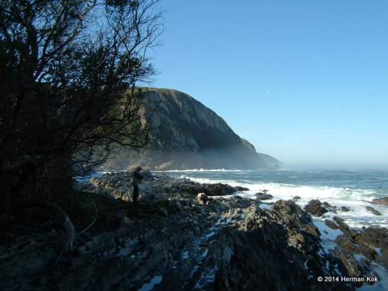 Storms River Mouth View