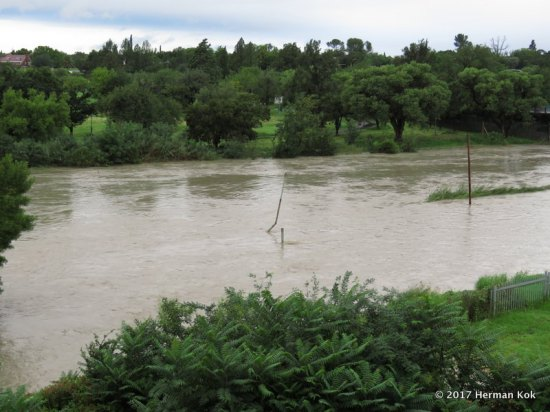 kroonstad-flood-2017-04