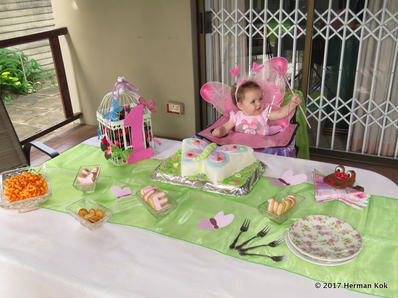 Butterfly birthday 3.JPG